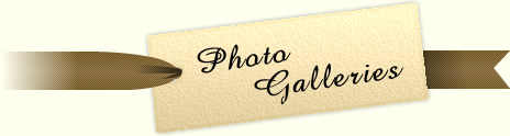 Photo Galleries